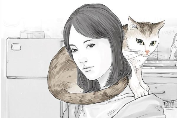 不墮淚者非貓奴:每個愛貓人心中最柔軟的痛