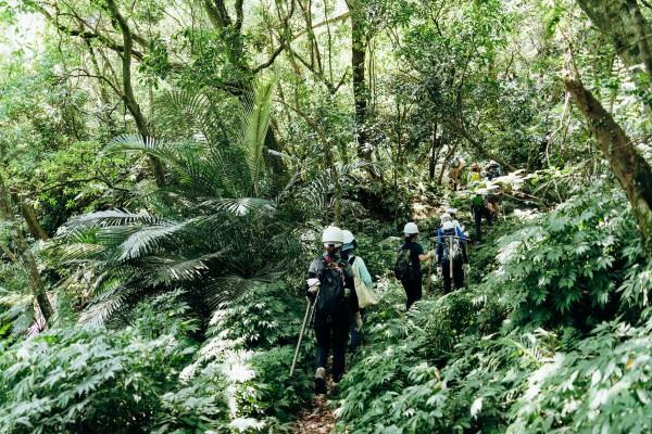 山林裡的公民行動——手作步道