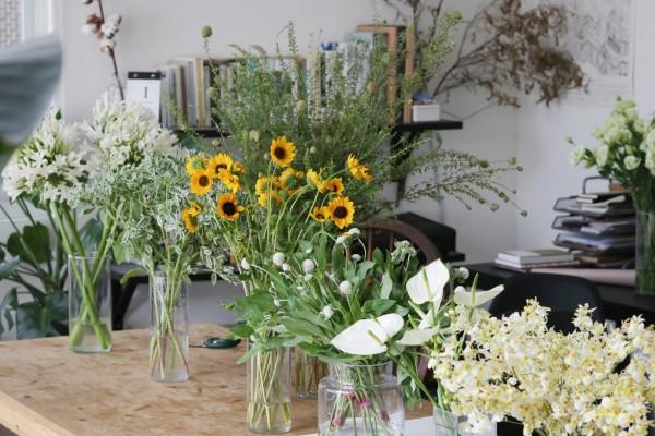 八種舒緩日常的植物:聞香、泡茶、點亮生活的花草世界